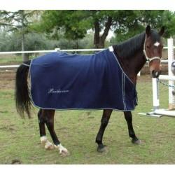 DVD Horse School I