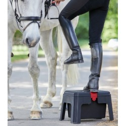 Frustino dressage bottone grip